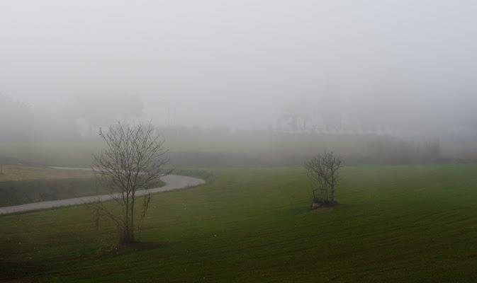 In the fog di killerqueen