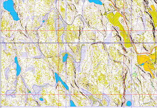 Photo: Map created with Karttapullautin from the open data of the National Land Survey of Finland (www.maanmittauslaitos.fi).