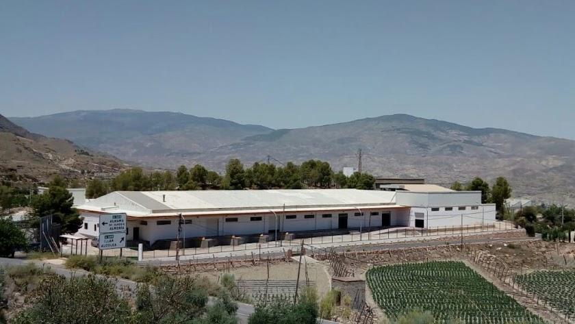 PP y PSOE se enzarzan por la naves adjudicadas a la mujer del alcalde de Huécija