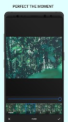 Analog Forest - Palette Forest - Film Filters APK screenshot thumbnail 8