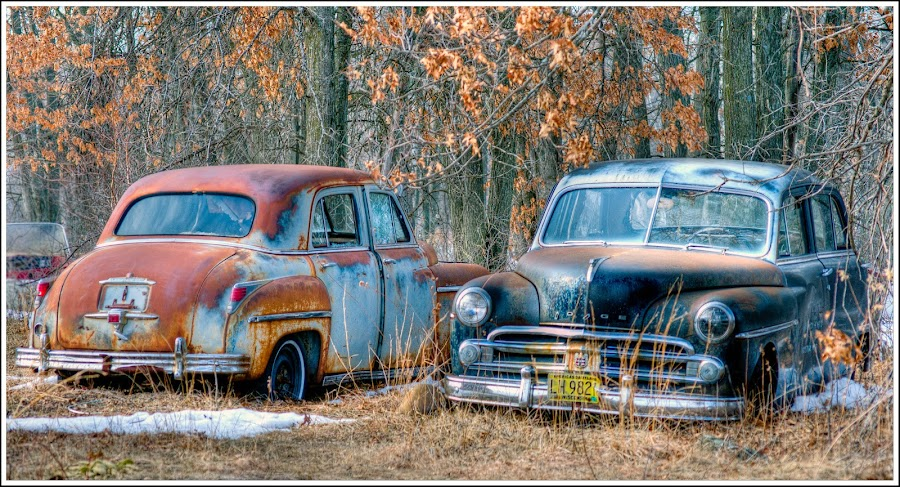 Old Friends by Jebark Fineartphotography - Transportation Automobiles ( automobiles, old, cars, transportation, rust, antique, rural )