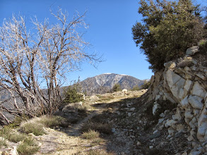 Photo: View northeast toward Mt. Baldy