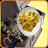 gold silver & metal detectors 1.0