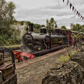 All Aboard!! by Davey T - Transportation Trains ( baggage, train, historic, oldest, smoke, trains )