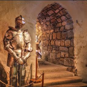 the knight by Jana Vondráčková - Artistic Objects Antiques