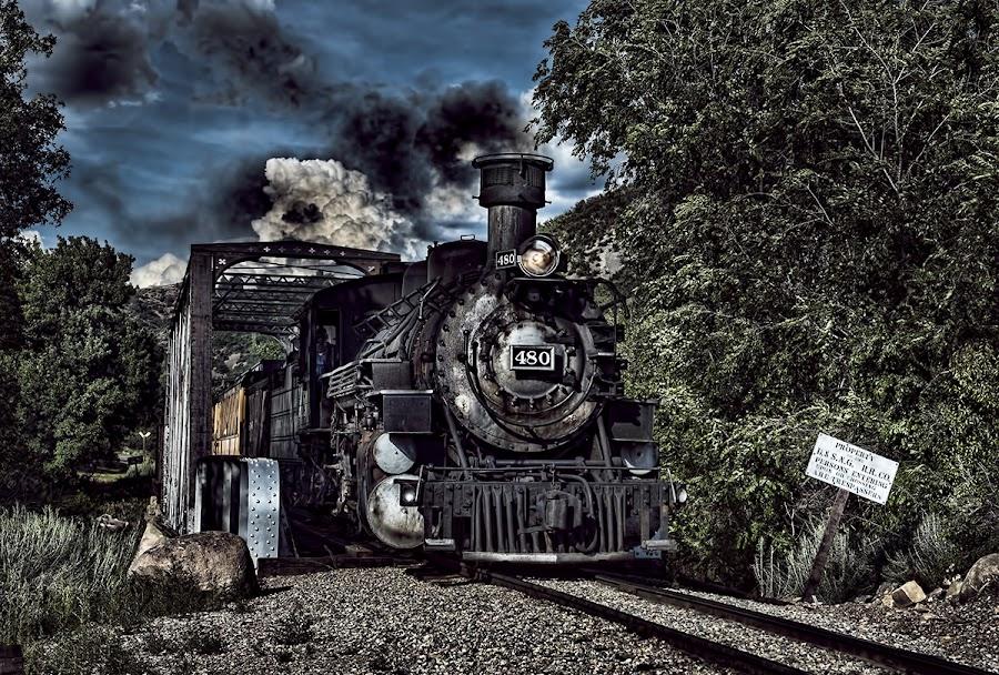 Durango Bridge by Lisa Coletto - Transportation Trains ( coal, locomotive, steam train, train, narrow gauge,  )