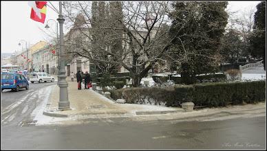 Photo: Piata 1 Decembrie 1918 - spatiu verde din fata Catedralei - 2018.01.16