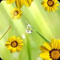 Flower photo Live Wallpaper icon