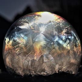 Frozen Sun Bubble by RichandCheryl Shaffer - Abstract Macro (  )