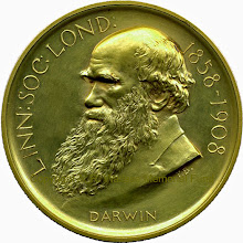 Photo: Wallace's unique gold version of the Darwin-Wallace medal of the Linnean Society of London (Darwin side). Awarded to him in 1908 on the 50th anniversary of the reading of the Darwin-Wallace paper in which evolution by natural selection was proposed for the first time. Copyright A. R. Wallace Memorial Fund.