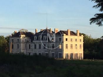 château à Selles-sur-Cher (41)