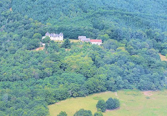 Vente château 4490 m2