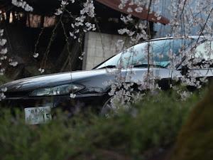 シルビア S15 ヴァリエッタのカスタム事例画像 しばちゃんさんの2020年04月11日18:38の投稿