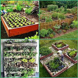 diy vegetable garden ideas screenshot thumbnail