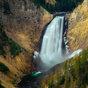 Yellowstone Waterfall by Rita Taylor - Landscapes Waterscapes ( forest, waterfall, water,  )