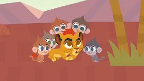 Five Little Monkeys thumbnail