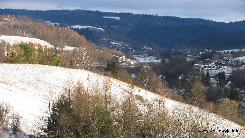 Zimowa Wołkowyja
