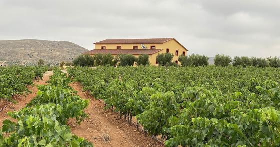 Bodegas Perfer, Vinos del Desierto de Almería