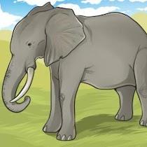 How To Draw Animals - screenshot thumbnail 09