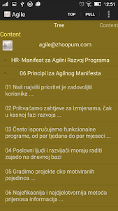 Agile Manifesto screenshot 2