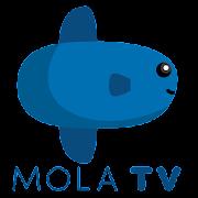 Mola TV - Broadcaster Resmi Liga Inggris 2019-2022