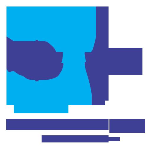 Dev Web Developer