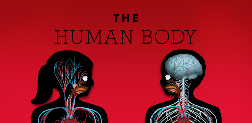 the human body by tinybop free download