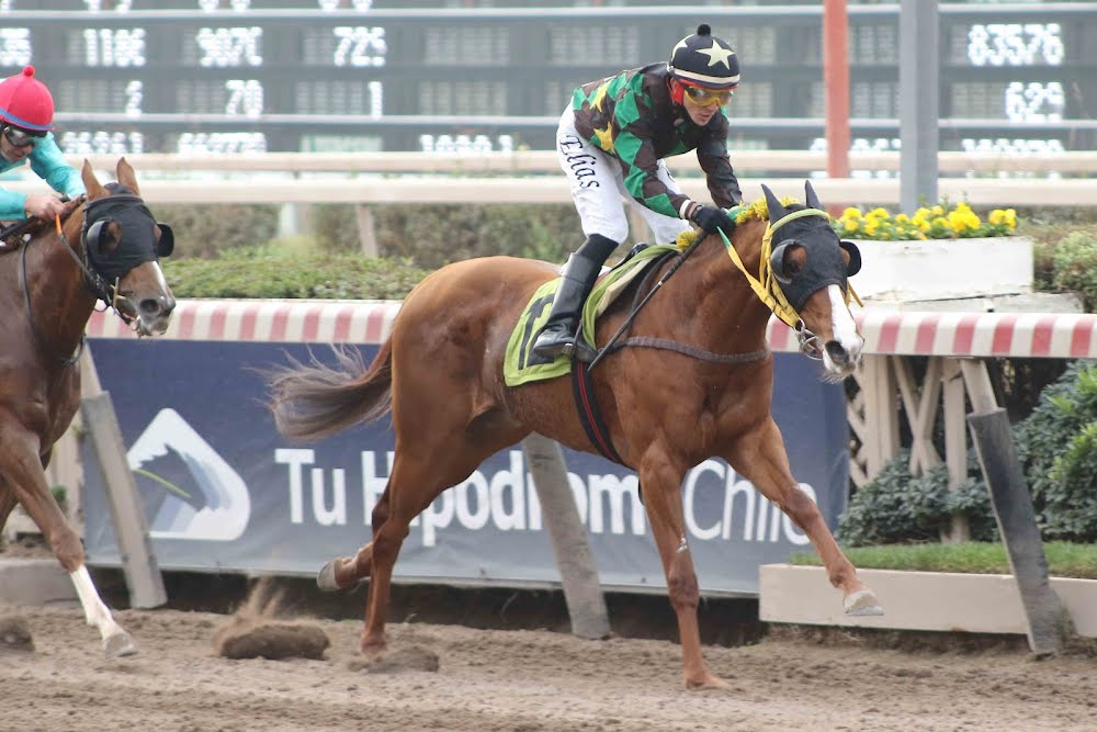 No Me Pilla (Seeking The Dia) gana Condicional (1000m-Arena-HCH).