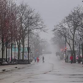 Foggy State Street by Don Scherschel - City,  Street & Park  Street Scenes ( #city #street scenes #people #weather #colors )