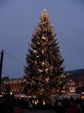 Photo: A large Christmas tree (sapin de noel) by one of the markets.