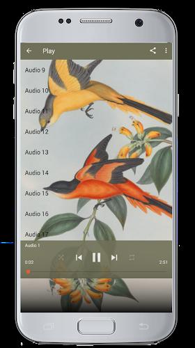 Download Master Kicau Burung Mantenan APK latest version app