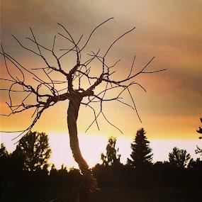 by Brian Boyer - Landscapes Sunsets & Sunrises