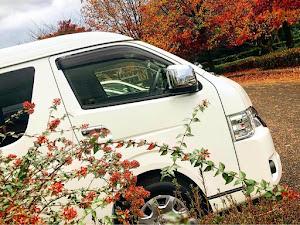 ハイエースワゴン TRH214Wのカスタム事例画像 みーまるさんの2020年11月23日08:40の投稿