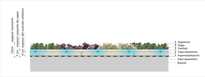 esquema de cubierta vegetal