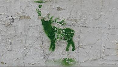Photo: Stencil; Unknown Artist; Hirsch