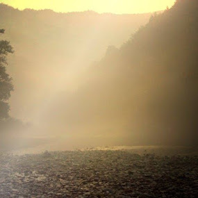 Yellow fog by Nat Bolfan-Stosic - Uncategorized All Uncategorized ( fantasy, fog, yellow, woods, river )