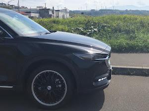CX-8 KG2P L Package 4WDのカスタム事例画像 katsuさんの2018年09月15日22:10の投稿