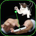 Cat laser pointer simulator icon