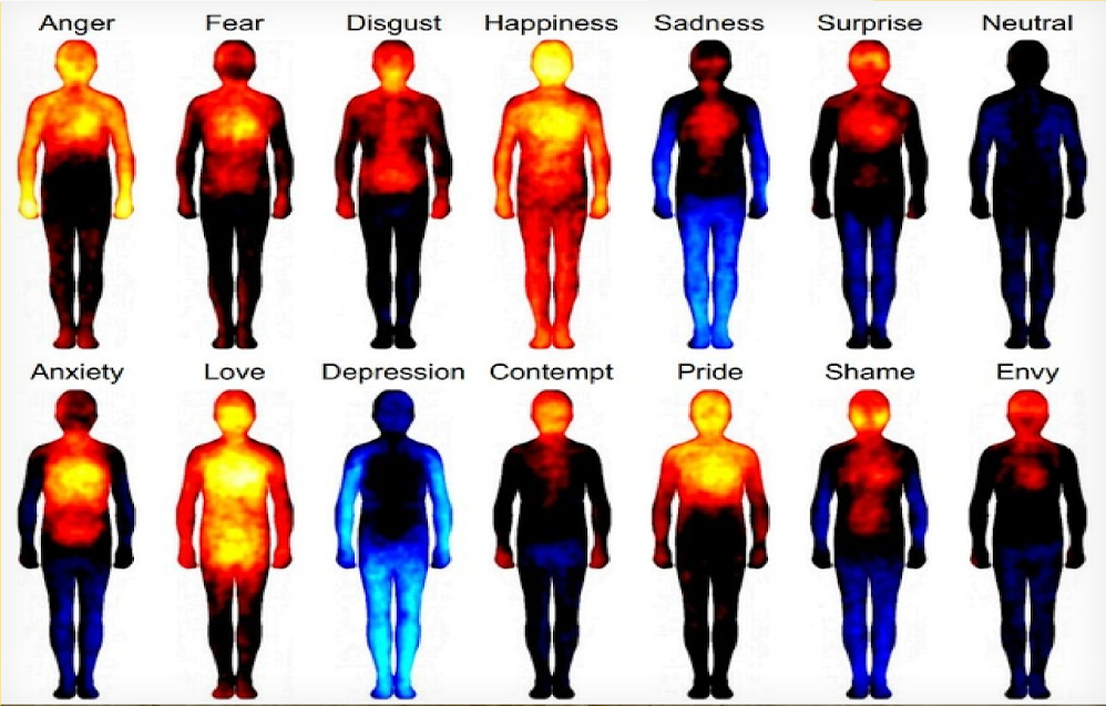 How Love And Other Emotions Are Mapped In The Body