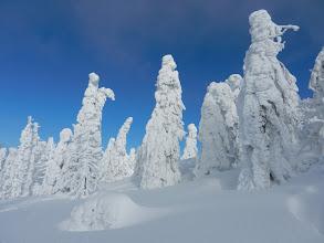 "Photo: 08 Rachel: ""Rachelmandl"" auf dem Weg zum Gipfel (26. Januar 2012)"
