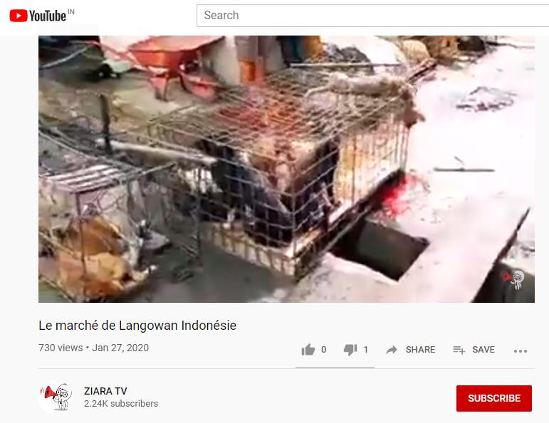 china youtube.png