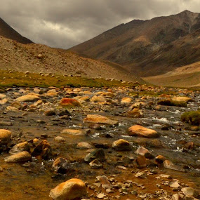 Water Path by Abhishek Majumdar - Landscapes Mountains & Hills