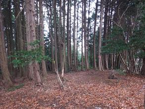 ここで朝倉山(右)との分岐(左は392mピーク方面)