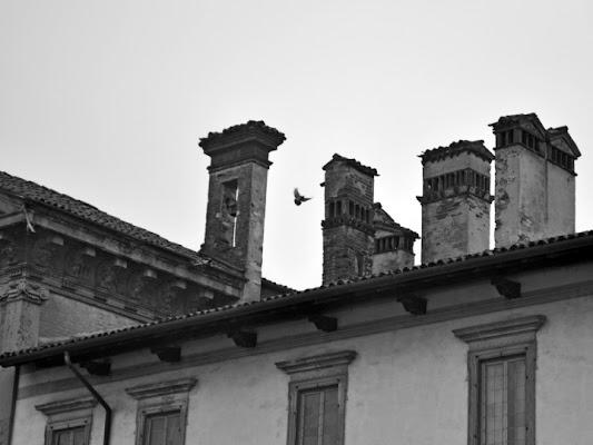 Comignoli in bianco e nero di Vincenzo72