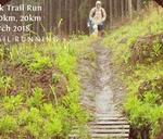 Howick Trail Run : 11 KARKLOOF