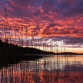 Norwegian Sunset by Morten Pettersen - Landscapes Sunsets & Sunrises ( waterscape, råde, sunset, oksenøya, norway )
