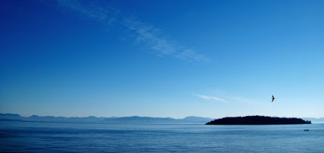 Photo: The coast has a beauty to it.. as do the mountains.. and the plains.. and the forests.. and.. and.. and.. ;)