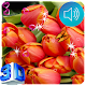 Tulip Live Wallpapers Download for PC Windows 10/8/7