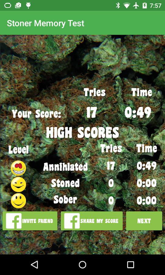Stoner Memory Test: Weed Brain- screenshot