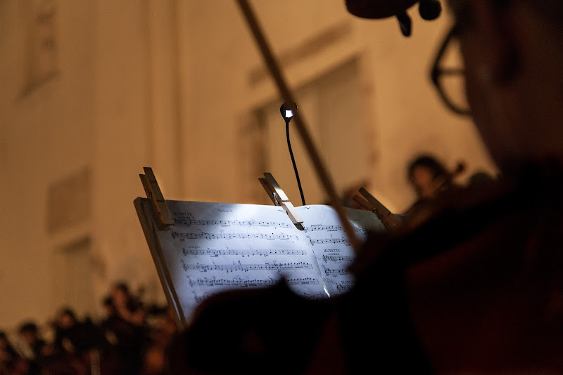 Violin concert di antoniod